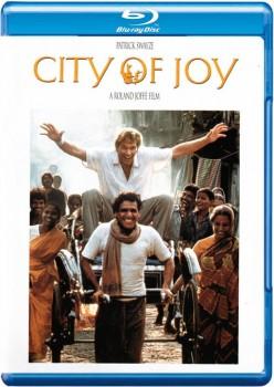 City of Joy 1992 m720p BluRay x264-BiRD