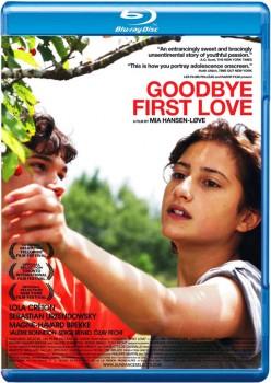 Goodbye First Love 2011 m720p BluRay x264-BiRD