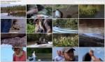 £owcy aligatorów / Swamp People (Season 3) (2012) PL.TVRip.XviD / Lektor PL