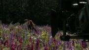 Trailers / Clips / Spots de Amanecer Part 2 - Página 4 C26e44215994517