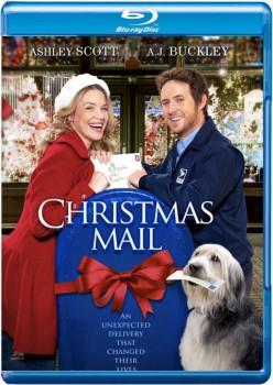 Christmas Mail 2010 m720p BluRay x264-BiRD
