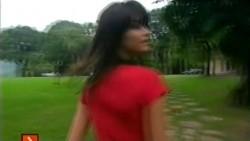 http://thumbnails104.imagebam.com/22174/7e83cc221734122.jpg