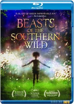 Beasts of the Southern Wild 2012 m720p BluRay x264-BiRD