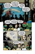 Teenage Mutant Ninja Turtles #14