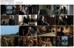 Komisarz Blond i Oko sprawiedliwości (2012) PL DVDRip XViD-M69 / Film Polski