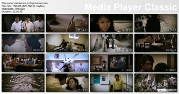 Download Habibie & Ainun (2012) DVDRip 600MB Ganool