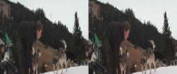 Der Husky Mann (2011) 3D.BluRay.HSBS.1080p.x264-CHD3D