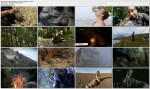 Szko�a przetrwania dzie? z �ycia Beara Gryllsa / A Day in the Life of Bear Grylls (2012) PL.DVBRip.XviD / Lektor PL
