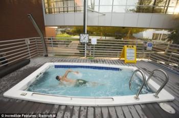 Kolam renang di dalam area kantor Goole / Incredible Features
