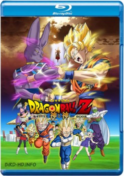Dragon Ball Z: Battle of Gods 2013 DC m720p BluRay x264-BiRD