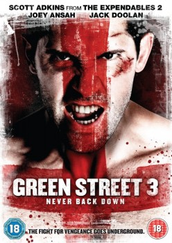 �������� 3 / Green Street 3: Never Back Down (2013)