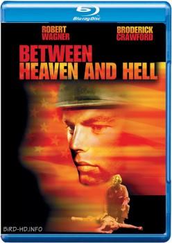 Between Heaven and Hell 1956 m720p BluRay x264-BiRD