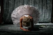 http://thumbnails104.imagebam.com/31410/b068c7314096153.jpg