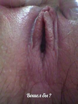 http://thumbnails104.imagebam.com/55155/9254dd551540053.jpg