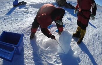 Антарктида. Селфи (2017) SATRip